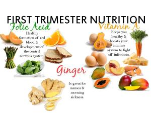 First Trimester Nutrition-page-001